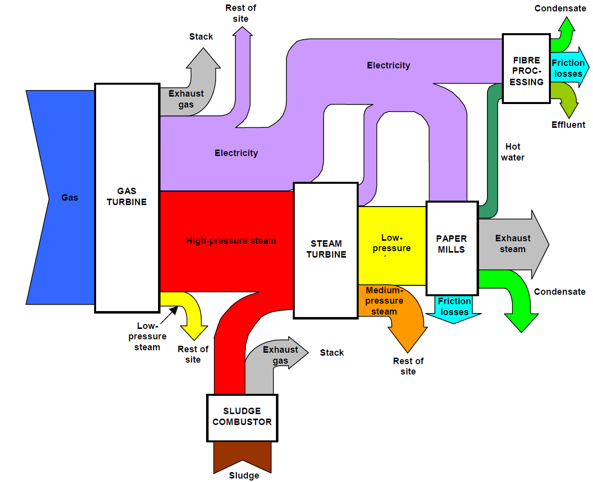 Biomass Power Plant Flow Diagram